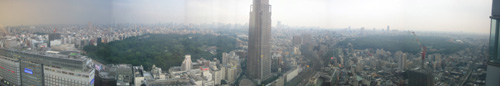 tokyo_downtown_hotel_view.jpg